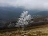 Alzens  Ariège
